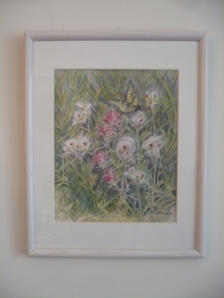Indian Paintbrush in white